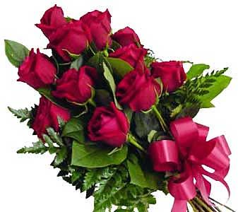 one dozen red roses wrapped in cello romance
